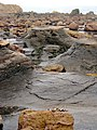 'Mermaid Tables', Ravenscar Beach - geograph.org.uk - 1474102.jpg