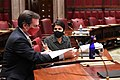 (02-09-21)NYS Senate Deputy Majority Leader Michael Gianaris.jpg
