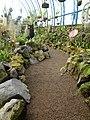 (Jardín Botánico de Quito) pic a6.JPG