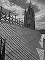 (La Basílica del Voto Nacional, Quito) pic. m.JPG