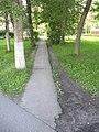 Асфальтовая тропинка влево - panoramio.jpg