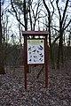 Голосіївський ліс DSC 0074.jpg