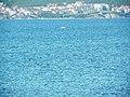 Делфини на фона на Слънчев бряг - panoramio (1).jpg