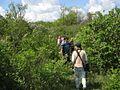 Дендрологічний парк 116.jpg