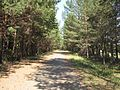 Ижевск - panoramio (16).jpg