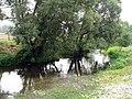 Каменка - panoramio (1).jpg