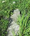 Каменны крыж1.JPG