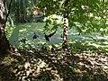 Мікрорайон Гречани, Хмельницький, Хмельницька область, Ukraine - panoramio (11).jpg