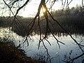 На беразе вадаёма - panoramio (1).jpg