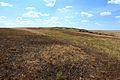 На вершине Бандитских гор - panoramio.jpg