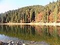 Озеро Синевир. Отражение.jpg