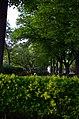 Парк имени Горького в Москве. Фото 19.jpg