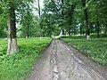 Парк ім. Т. Г. Шевченка, Прилуцький район, смт. Линовиця 74-241-5030 13.jpg