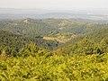 Планина Озрен (60).jpg