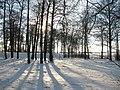Солнечный зимний день. - panoramio.jpg