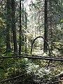 Фото путешествия по Беларуси 571.jpg