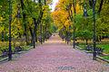 Центральна алея парку восени.jpg