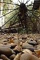 מוזיאון לתולדות גדרה והבילויים - אתרי מורשת במרכז הארץ 2015 - גדרה (214).JPG
