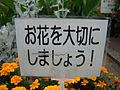 お花を大切にしましょう! (3538082973).jpg