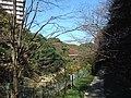 むじなが池~白山神社 - panoramio.jpg
