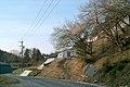 中道小景 - panoramio.jpg