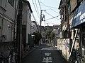二子玉川駅付近 - panoramio - nk1974 (1).jpg