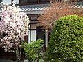 玄興寺 Genko-ji Temple - panoramio (2).jpg