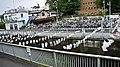第7回神田川 こいのぼりまつり 2012.05.04 12-54 - panoramio.jpg