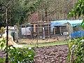 -2019-12-06 Chicken coop, Craft Lane, Frogshall, Northrepps.JPG