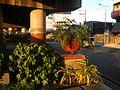 01273jfCircumferential Road 19 Bagong Ilog Pasig Boulevard Flyover Vargas Centennial Bridgefvf.jpg