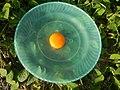 08800jfFilipino foods fruits Bulacan landmarksfvf 37.jpg