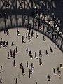 11-04-10 Jeux d'ombres avec la Tour Eiffel.jpg