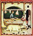 12-alimenti,carni bovine,Taccuino Sanitatis, Casanatense 418.jpg