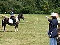 13 Regional Pony Rally in Rudawka Rymanowska.JPG