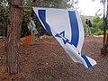 15-מערת הפלמח משמר העמק צילום מתי חלילי (15) הדגל מונף בגאווה.jpg