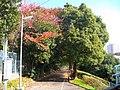 1 Chome Kitamidorigaoka, Toyonaka-shi, Ōsaka-fu 560-0001, Japan - panoramio.jpg
