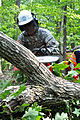 1st Battalion chops down trees during AT 110915-A--570.jpg