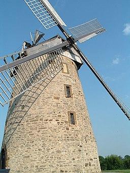 2007 06 09 Liesbergmühle Enger NRW Bild0010