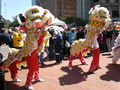2008 Olympic Torch Relay in SF - Lion dance 40.JPG