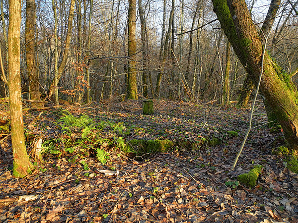 2011-12-28 15-51-42-puits-buyer.jpg