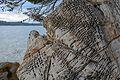 20140507 Rab sandstone Setaliste fra Odorika Badurine 1.jpg
