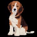 201412 dog.png