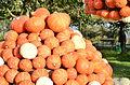2014 Kürbisfestival - Jucker Farm (Juckerhof) 2014-10-31 15-01-01.JPG