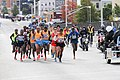 2014 New York City Marathon IMG 1662 (15077693063).jpg