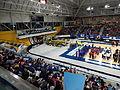 2014 Women's Wheelchair Basketball Championships - Opening Ceremony.jpg