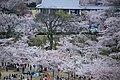 20160403 Himeji-Castle 3363 (26553295040).jpg