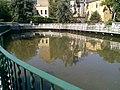 20160719 Giardino della Gusatalla peschiera (particolare).jpg