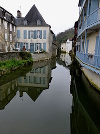 The river Saleys and its old houses in Bearn
