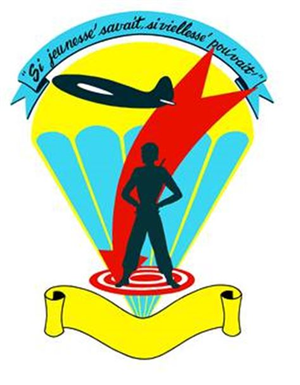442nd Fighter Wing - Image: 442 Troop Carrier Wing emblem