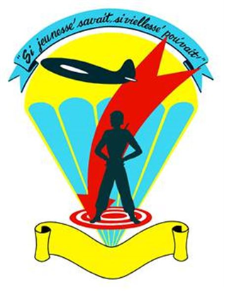 442nd Fighter Wing - Image: 442 Troop Carrier Wing emblem